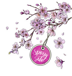 round spring sale tag is hanging on sakura branch vector image