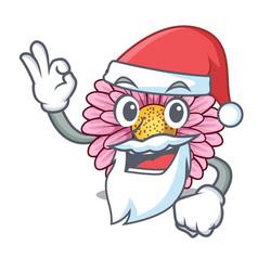 Santa gerbera flowers in the cartoon shape vector