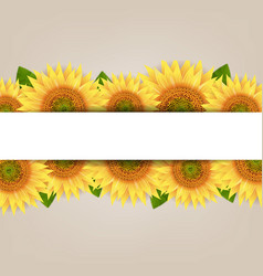 Sunflower border with paper banner vector