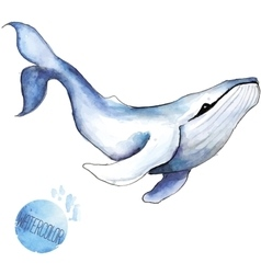 watercolor whale vector image