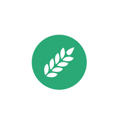 wheat ear icon in circle symbol logo isolated on vector image