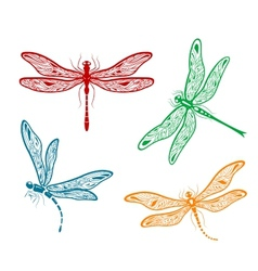 Pretty dainty dragonfly designs vector image