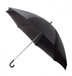 umbrella illustration vector image