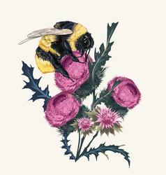 beautiful botanical fashion bumblebee vector image