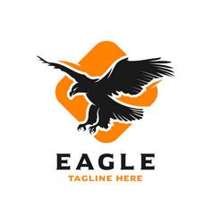 bird logo and box design template vector image