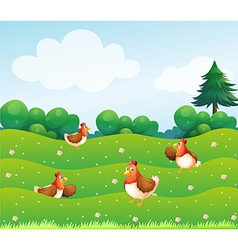 Chickens on Hill vector image