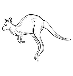 Hand draw kangaroostyle sketch tattoo vector