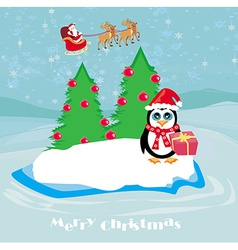 Penguin with Christmas gift vector image