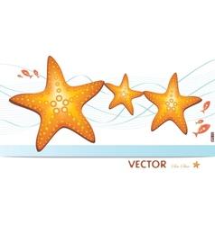 happy family of sea-stars vector image