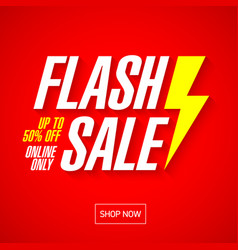 Flash sale bright banner or poster one day big vector