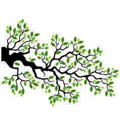 Green leaf tree branch vector image vector image