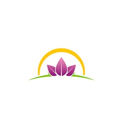 beauty leaf spa abstract logo vector image