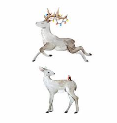 watercolor deer set vector image vector image