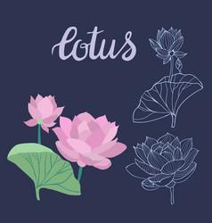 beautiful lotus flowers symbol design element vector image