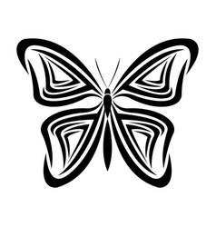 Butterfly tribal tatto animal creativity design vector
