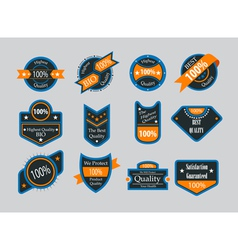 Collection of vintage colorful design labels vector image