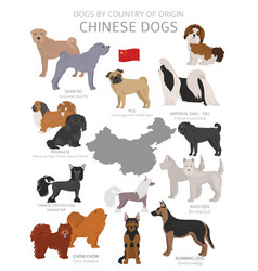 Dogs country origin chinese dog breeds vector
