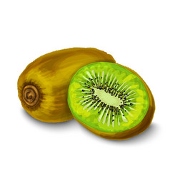 Kiwi isolated poster or emblem vector image