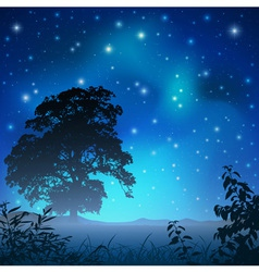 night sky with tree vector image