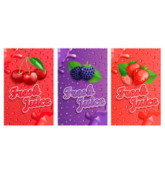 set blackberry cherry and strawberry fresh vector image