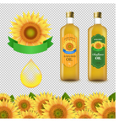 Sunflowers and olive oils bottle white labels vector
