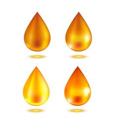 realistic oil or honey drop set vector image