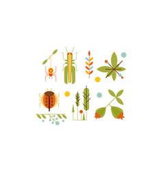 collection of insects and plants nature and vector image