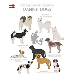 Dogs country origin danish dog breeds vector