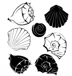 Silhouette of sea shells vector