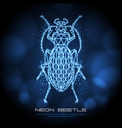 Abstract neon polygonal triangle ground beetle vector
