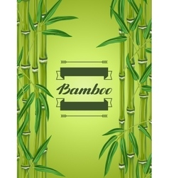 Background with bamboo plants and leaves Image vector image