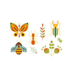 Collection of insects and plants butterfly bee vector