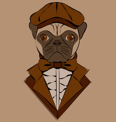 Cute with pug in old-fashioned cap and jacket vector
