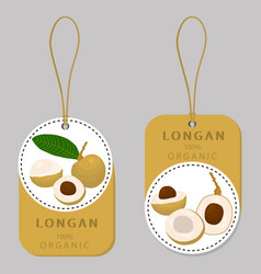 For fruit yellow longan vector