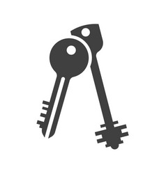 icon of two keys on a white background vector image