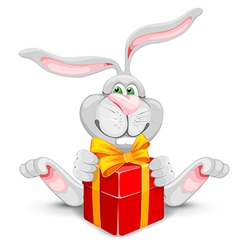 Rabbit and gift vector image