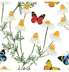 Seamless background of chamomiles and butterflies vector