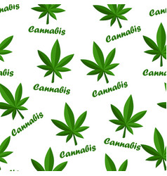 Seamless pattern cannabis herb leaf and lettering vector