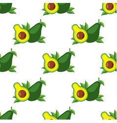 Seamless pattern with the image of avocado for vector