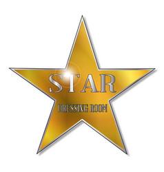 star dressing room vector image