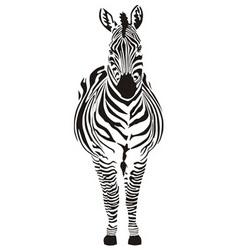 zebra black and zero vector image