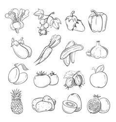 doodles of vegetables and fruits hand drawing vector image vector image