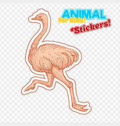 farm animal ostrich in sketch style on colorful vector image vector image