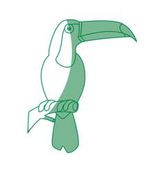 wild tucan cartoon vector image vector image