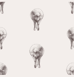 background sketches walking funny sheeps vector image