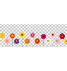 Border colorful gerber transparent background vector