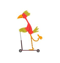 colorful bird riding kick scooter funny bird vector image
