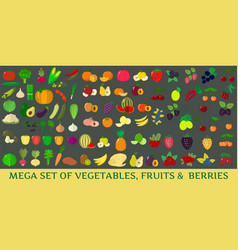 mega set of fresh vegetables fruits and berries vector image