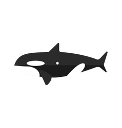 Orca Whale Primitive Style Childish Sticker vector image