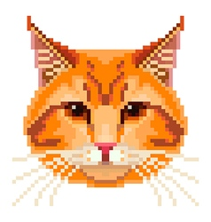 Pixel red cat face isolated vector image vector image